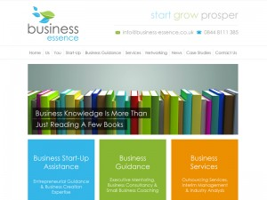 Business Coaching Website
